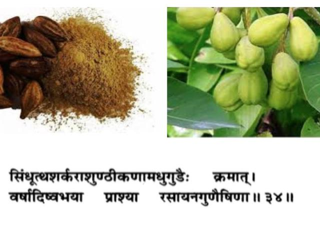 Haritaki-Ayurveda-terminalia-chebula