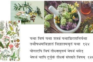 L'oléation interne selon l'Ayurveda, une vision.