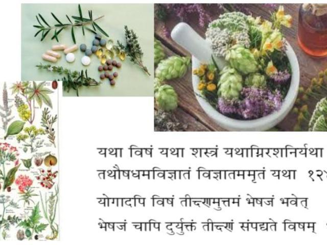 Ayurveda-plantes-médicinales-ayurvédiques