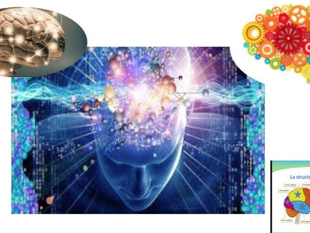 Esprit cerveau ayurveda manas paris