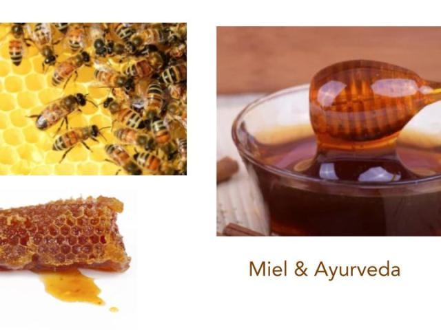 #miel#nectar#madhu#ayurveda#Paris.