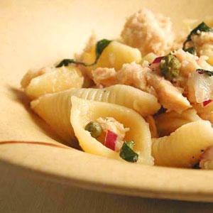 pasta-shells-ck-1036160-x