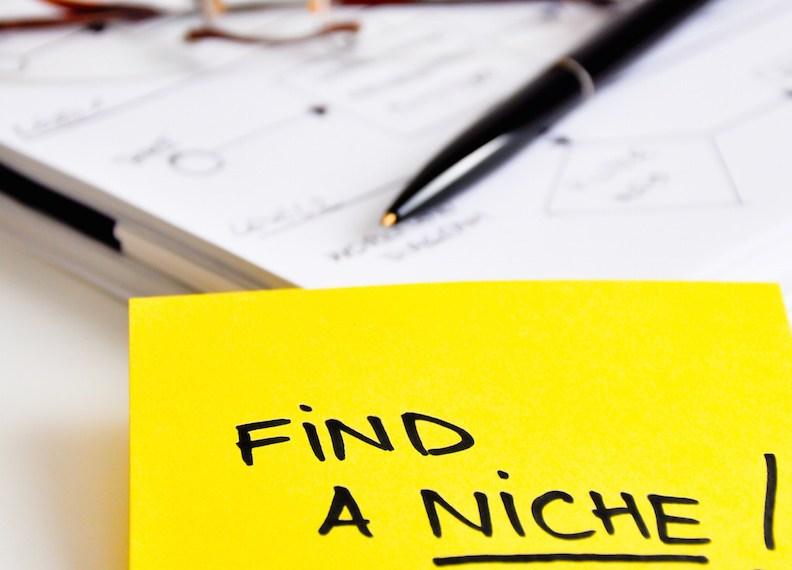find a niche advice