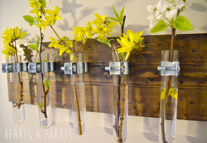 Hanging Test Tube Wall Planter