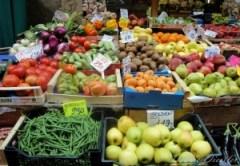 farmers-market-2-in-bologna-italy