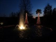 December: DSBG Holiday Lights