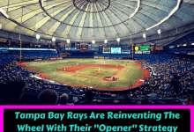 tampa bay rays opener strategy