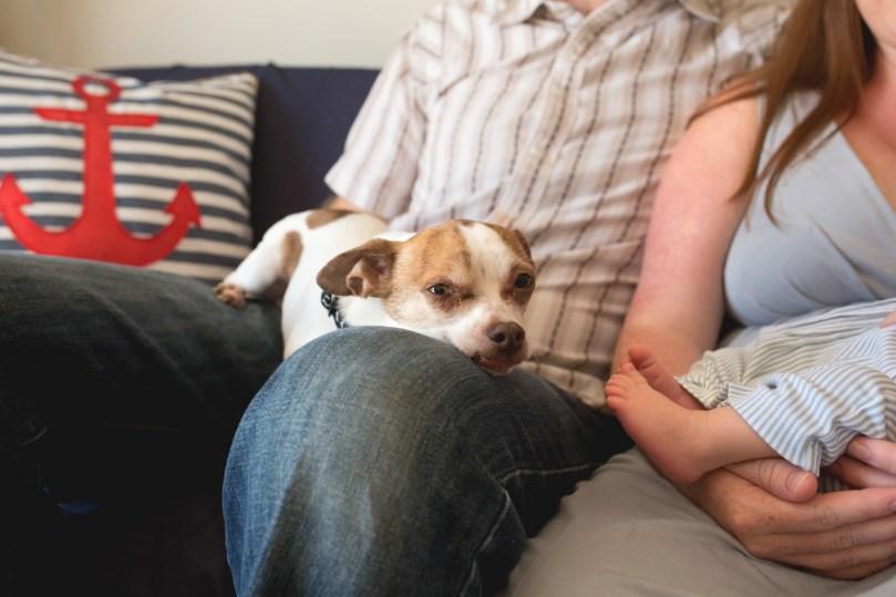 columbus-ohio-lifestyle-photography-family-dog-full