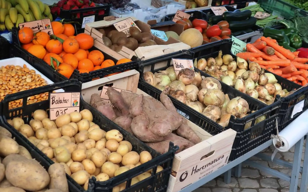Food and Medicine – The Unthinkable Business Model