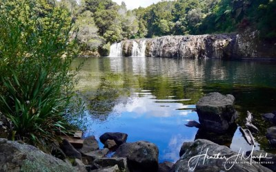 Kerikeri Part One – Discover New Zealand
