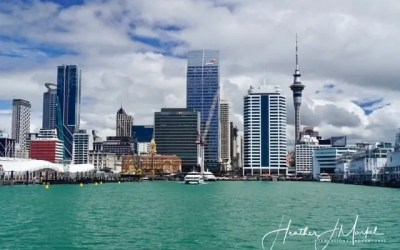 Auckland Activities To Plan Your Next Trip