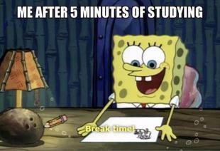 studying 9