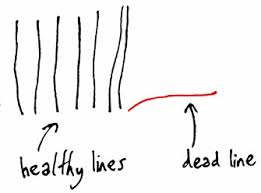healthy lines dead lines