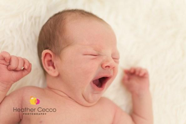 Newborn Portraits – Malvern, PA