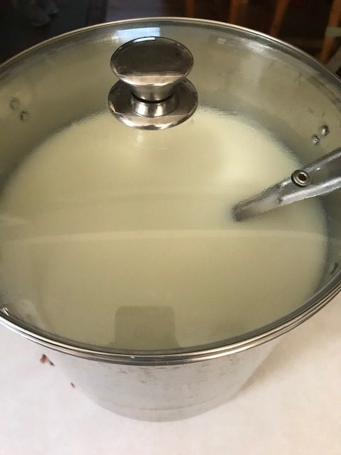 letting the milk sit after the rennet has been stirred in.