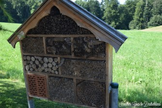 A home for assorted critters