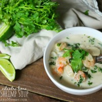 Cilantro Lime Coconut Shrimp Soup