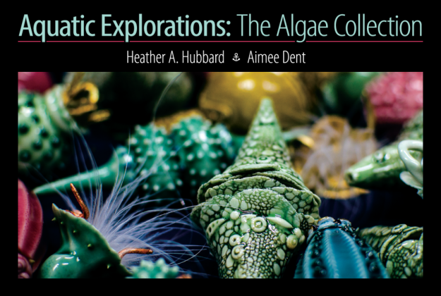 Aquatic Explorations postcard front