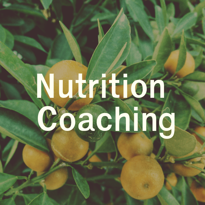 Virtual Intuitive Eating Nutrition Coaching