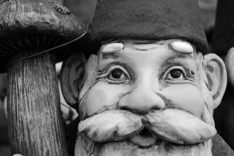 Gnome face