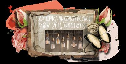 sw-board-11-2016