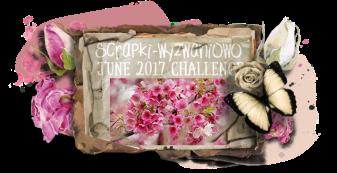 sw-board-6-2017