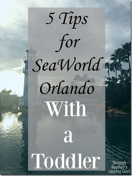 seaworld with a toddler (2)