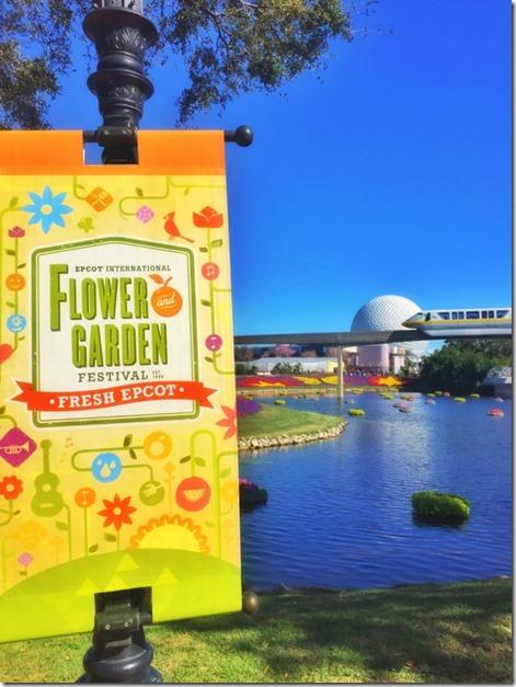flowerandgarden