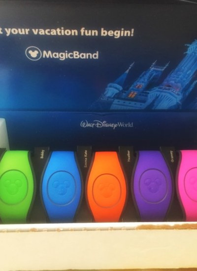My Disney Experience and Magic Bands FREE E-Course