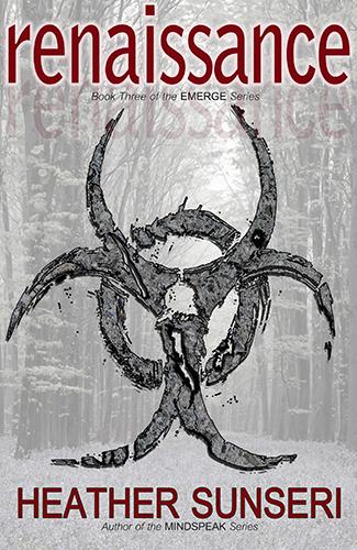 renaissance paperback cover final 325x500