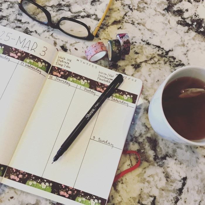 A blog post where I plan my upcoming week of February 25 through March 3. We talk about my new thriller, Death is in the Details, and about Nora Roberts and plagiarism.