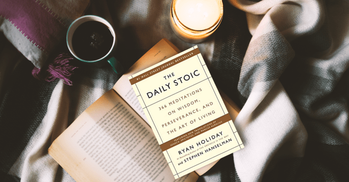 The Daily Stock by Ryan Holiday
