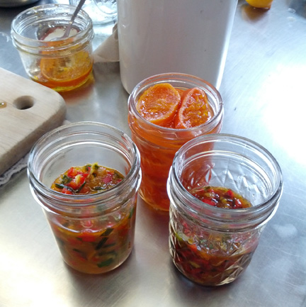 chili sauce 2 crop 72