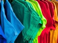 Gecko T-Shirt Sublimation Heat Press Machine Review