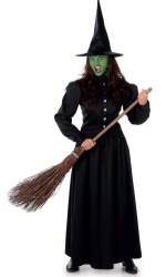 wicked costume witch west oz wizard halloween dress womens adult wich fancy move mouse enlarge