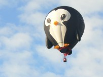 Balloon penguin 2