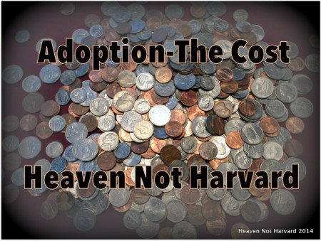 Adoption costs are part of the journey many avoid discussing. Families come to adoption in various ways. This is only our story and experience.