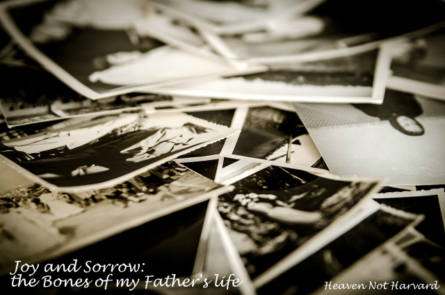 Joy and Sorrow: the Bones of My Father's Life