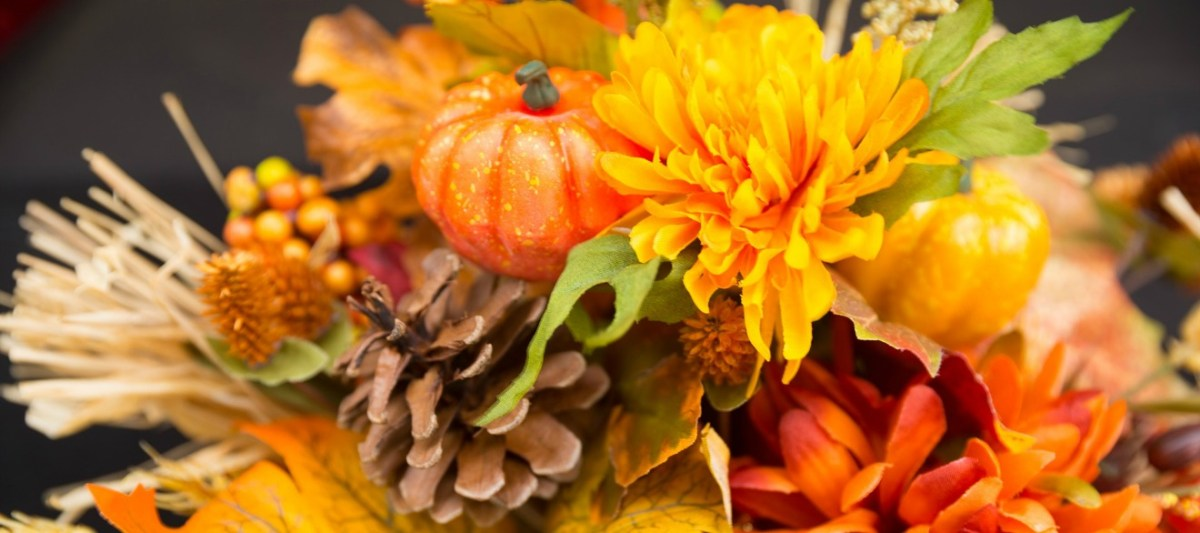 Are you looking for cute Thanksgiving Decorations?