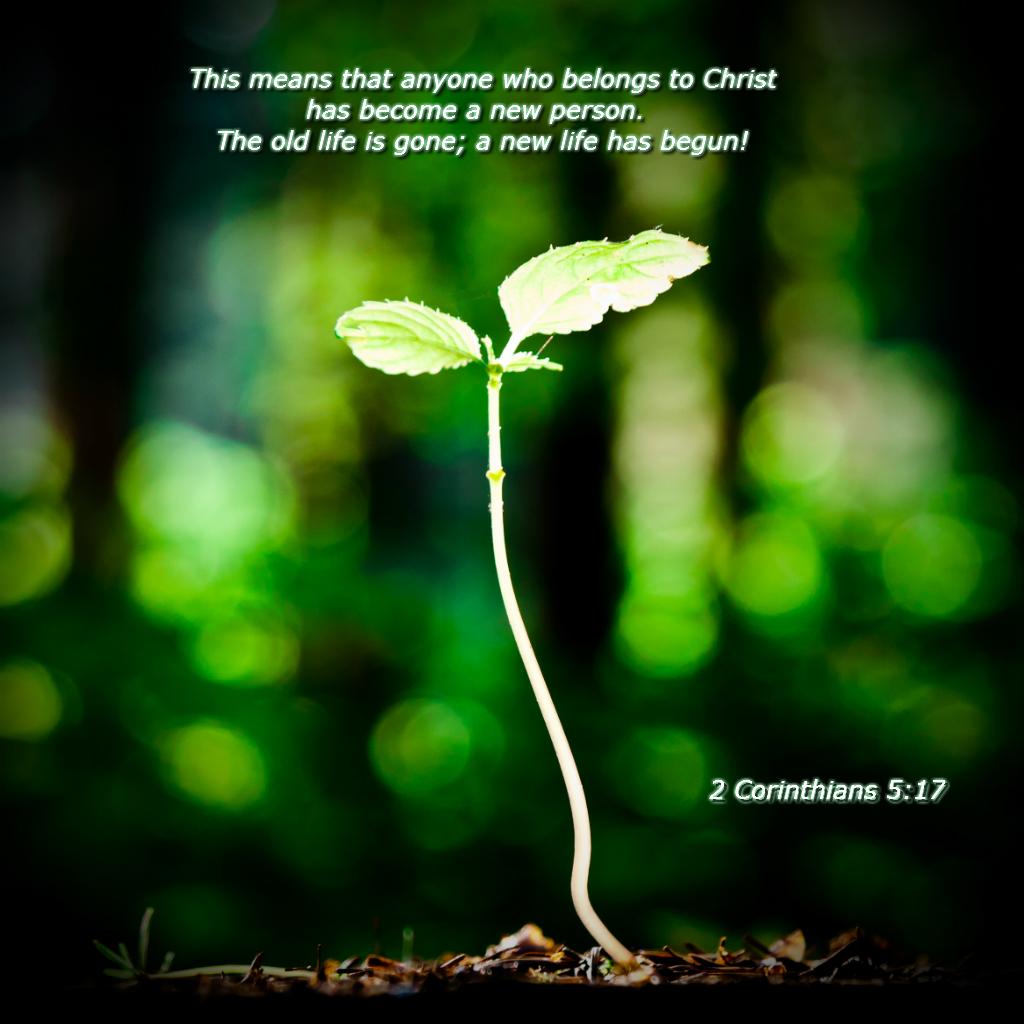 A New Life Has Begun Who Belongs To Christ