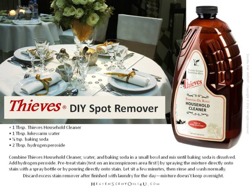thieves DIY spot remover