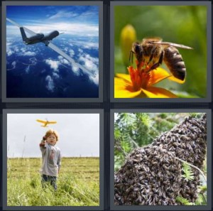 4 Pics 1 Word Answer For Plane Bee
