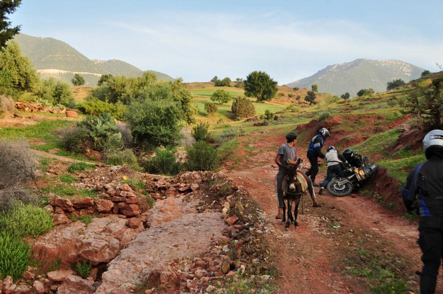maroc (338 of 467)
