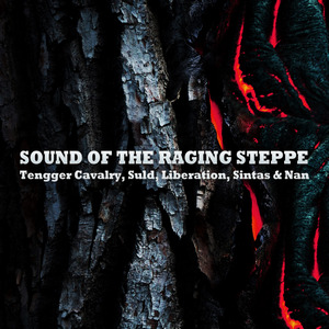 Various Artists - Sound Of The Raging Steppe