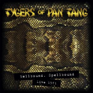Tygers Of Pan Tang - Hellbound Spellbound '81