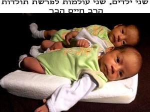שני ילדים, שני עולמות לפרשת תולדות