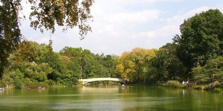 central-park-470977_640