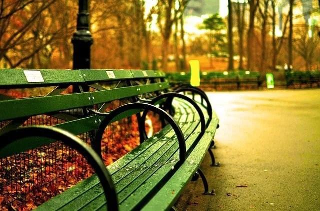 הסנטרל פארק ניו יורק