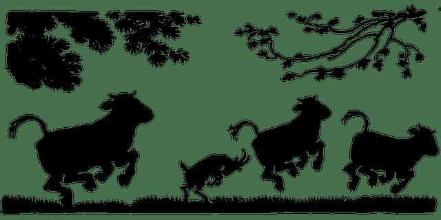 """מדוע הביא הרמב""""ם שהפרה העשירית """"יעשה המלך המשיח""""?"""