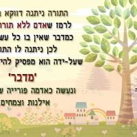 למה התורה ניתנה במדבר - חג השבועות - דבר תורה קצר לחג השבועות
